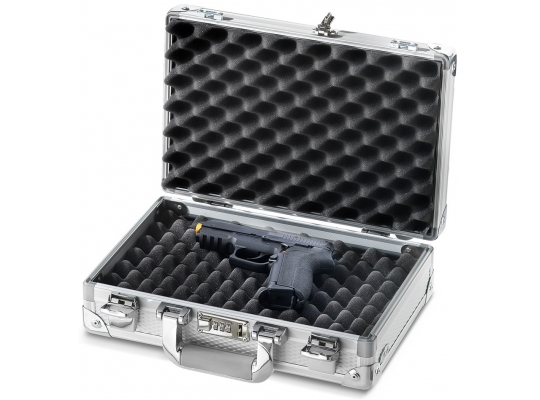 CASES FOR WEAPONS